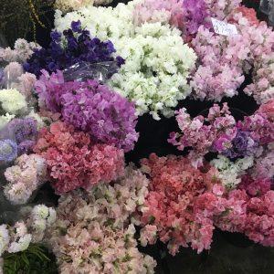 Flower Market Visit