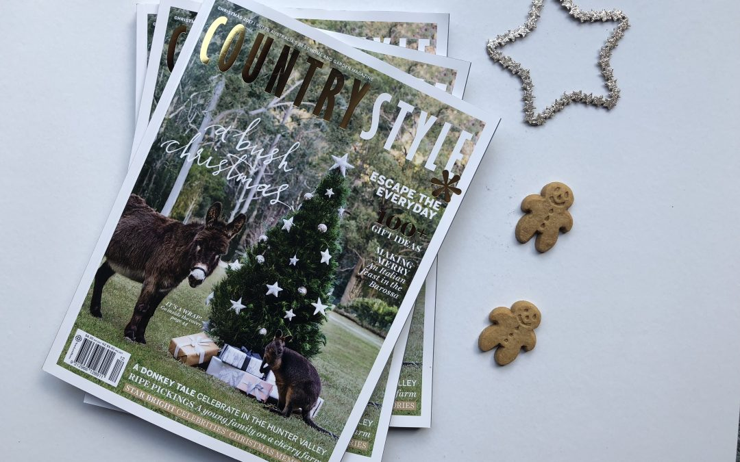Country Style Christmas Cover Shoot