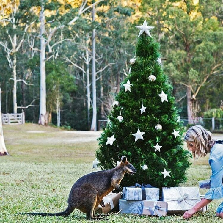 country-style-christmas-shoot-interior-design-sydney